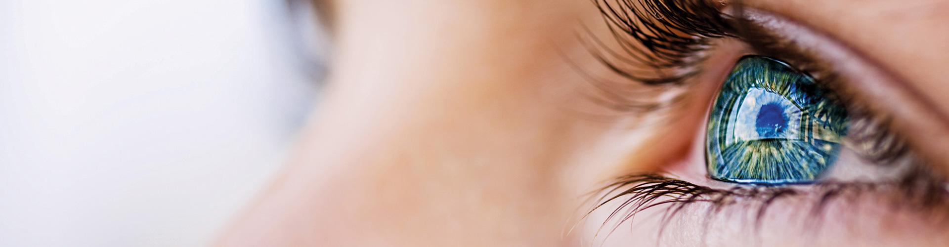 Kopp-Kirsamer - Slider groß Gesicht Auge